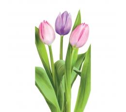 "Nosinaitės ""Tulpės"" (10 vnt.)"