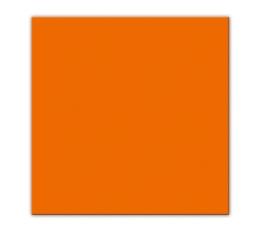Servetėlės, oranžinės (25 vnt.)