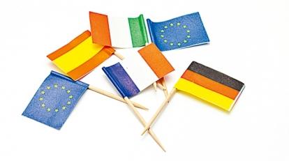 "Smeigtukai-vėliavėlės ""Tautos"" (50 vnt.)"