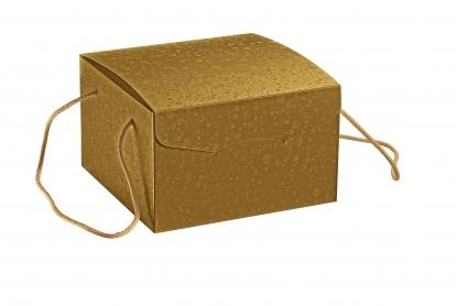 Dėžutė su rankenelėmis, auksinė (24,5X24,5X15 cm)
