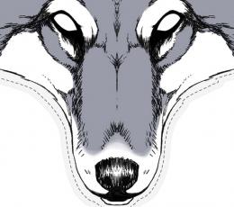 """Kartoninė kaukė """"Vilkas"""" 1"""