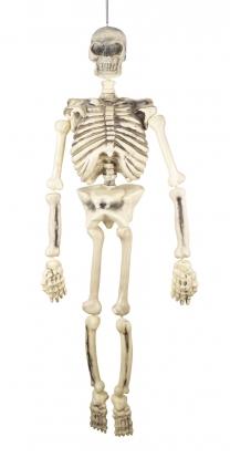 "Dekoracija ""Skeletas"" (1,50 m)"