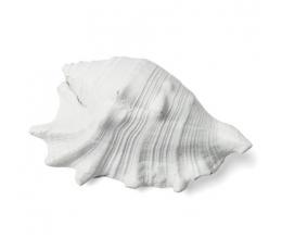 Dekoratyvinė kriauklė, balta (12X8 cm)