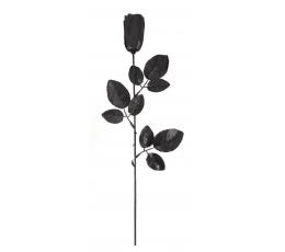 Dekoratyvinė rožė, juoda