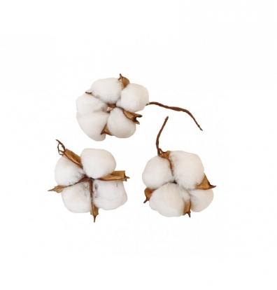 Dekoratyviniai medvilnės pūkeliai (9 vnt.)