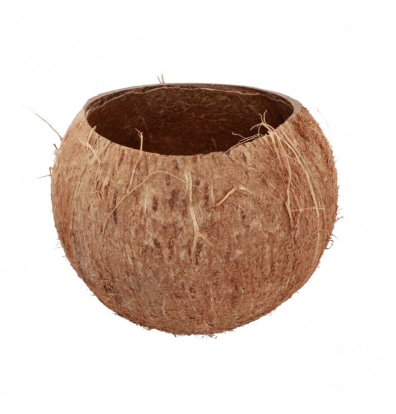 "Dekoratyvinis indelis ""Kokosas"" (13x10 cm)"
