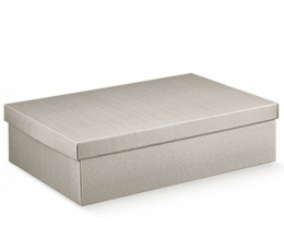 Dėžutė - Linea stačiakampė /pilka (1 vnt./300x230x110)