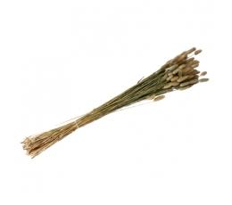 Dirbtinių smilgų puokštelė (50 g./80 cm)