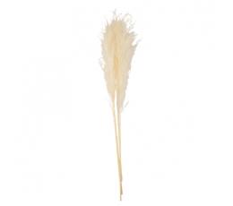 Dirbtinių smilgų puokštelė, kreminė (3 vnt./80 cm)