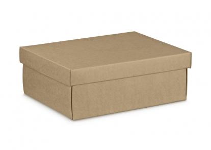 Dovanų dėžutė su dangčiu, kraftinė (30X23X11 cm)