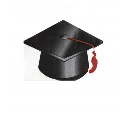 "Forminės servetėlės ""Graduate"" (16 vnt.)"