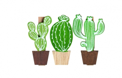 "Segtukai-dekoracijos ""Kaktusai"" (6 vnt.)"