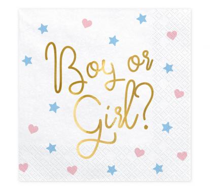 """Servetėlės """"Boy or Girl"""" (20 vnt.)"""