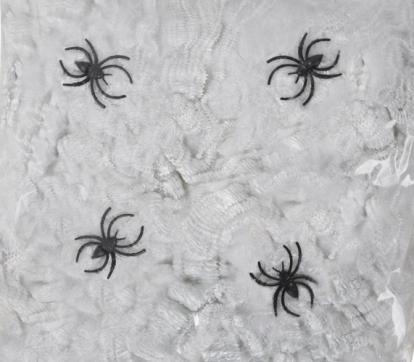 Voro tinklas su voriukais, baltas (56 g)