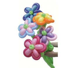 """Balionų figūra """"Ramunės"""" spalvotos"""