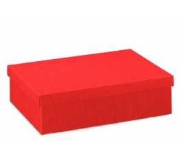 Dėžutė / stačiakampė / raudona (1 vnt./220x160x40 mm.)