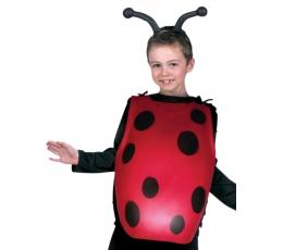 """Karnavalinis kostiumas """"Boružėlės kūnas"""""""