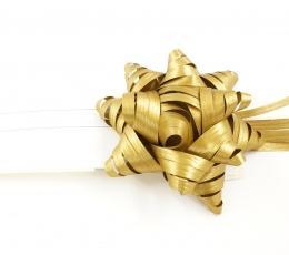 Kaspinėlis dovanai (1 vnt./8 cm.) 1