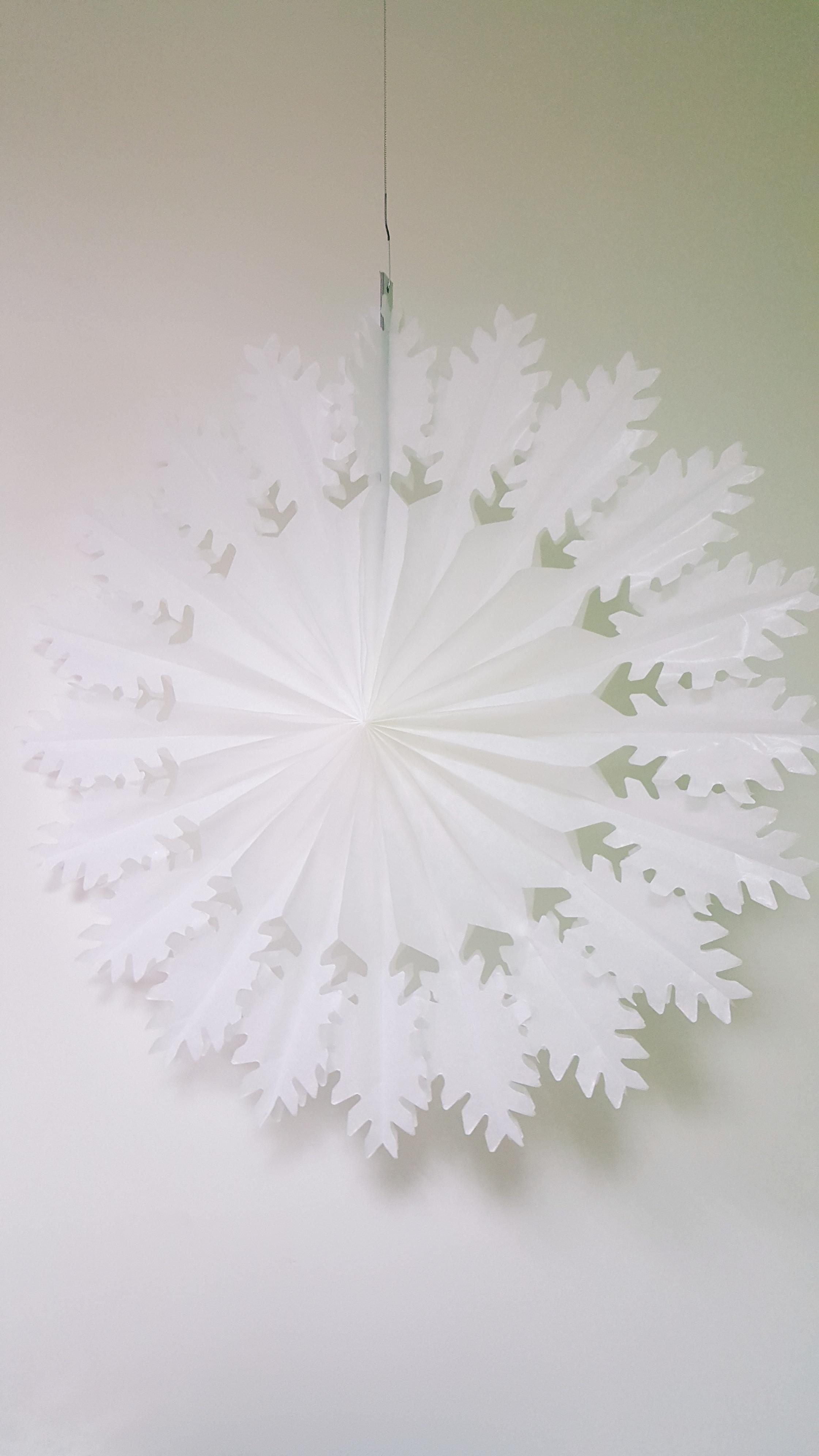 Karpyta snaigė, balta (50 cm)