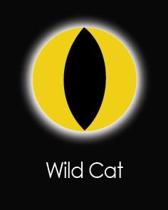 """Akių lęšiai """"WILD CAT"""" (1 dienos)"""